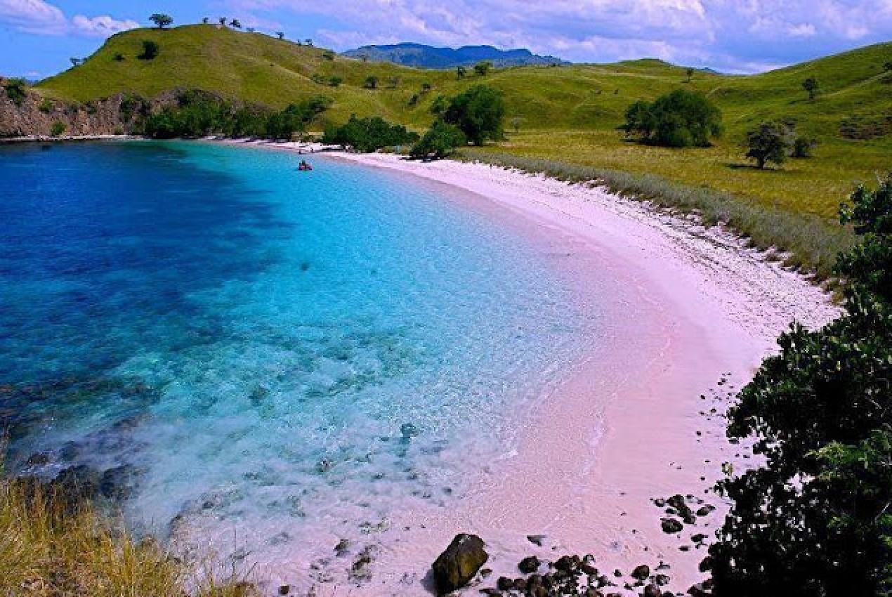 http://www.pemburuombak.com/media/k2/galleries/1529/tempat-wisata-yang-wajib-dikunjungi-saat-berlibur-ke-lombok-pantai-pink-lombok.jpg
